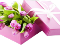 Депутаты поздравляют всех прекрасных жительниц Григориопольского района с Международным Женским Днем!